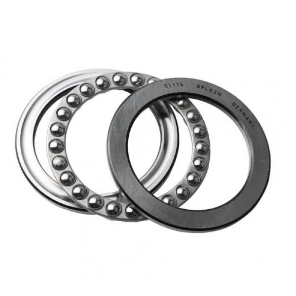 Hot Sale SKF Chrome Steel Snl 515 Bearing with Housing